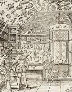 The museum of Ferrante Imperato, 1599