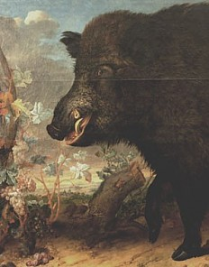 Philipp Ferdinand de Hamilton: Wildsau aus dem Lainzer Tiergarten, Ölgemälde, 1712