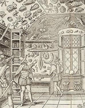 Das Museum des Ferrante Imperato, 1599