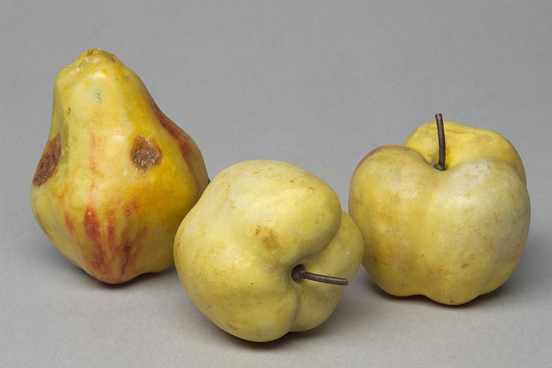 Marble fruits, Italy, late 16th century