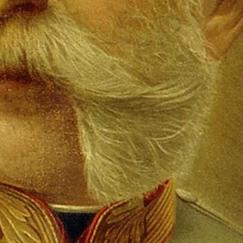 Bart von Kaiser Franz Joseph I